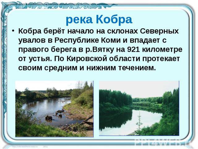 река Кобра Кобра берёт начало на склонах Северных увалов в Республике Коми и впадает с правого берега в р.Вятку на 921 километре от устья. По Кировской области протекает своим средним и нижним течением.