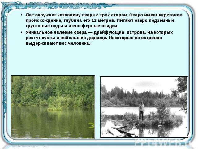Лес окружает котловину озера с трех сторон. Озеро имеет карстовое происхождение, глубина его 12 метров. Питают озеро подземные грунтовые воды и атмосферные осадки. Лес окружает котловину озера с трех сторон. Озеро имеет карстовое происхождение, глуб…