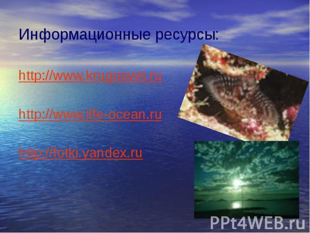 Информационные ресурсы: http://www.krugosvet.ru http://www.life-ocean.ru http://fotki.yandex.ru