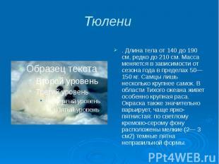 Тюлени . Длина тела от 140 до 190 см, редко до 210 см. Масса меняется в зависимо