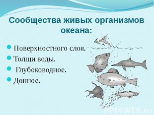 Сообщества живых организмов океана: Поверхностного слоя. Толщи воды. Глубоководн