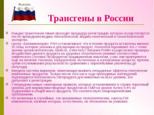Трансгены в России Каждая трансгенная линия проходит процедуру регистрации, кото