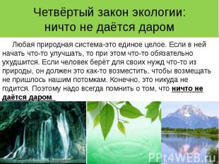 Четвёртый закон экологии: ничто не даётся даром Любая природная система-это един