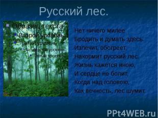 Русский лес. Нет ничего милее Бродить и думать здесь. Излечит, обогреет, Накорми