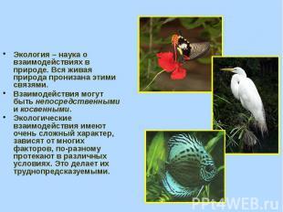 Экология – наука о взаимодействиях в природе. Вся живая природа пронизана этими