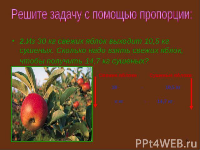 2.Из 30 кг свежих яблок выходит 10,5 кг сушеных. Сколько надо взять свежих яблок, чтобы получить 14,7 кг сушеных? 2.Из 30 кг свежих яблок выходит 10,5 кг сушеных. Сколько надо взять свежих яблок, чтобы получить 14,7 кг сушеных?