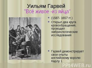 (1587- 1657 гг.) (1587- 1657 гг.) Открыл два круга кровообращения, проводил эмбр