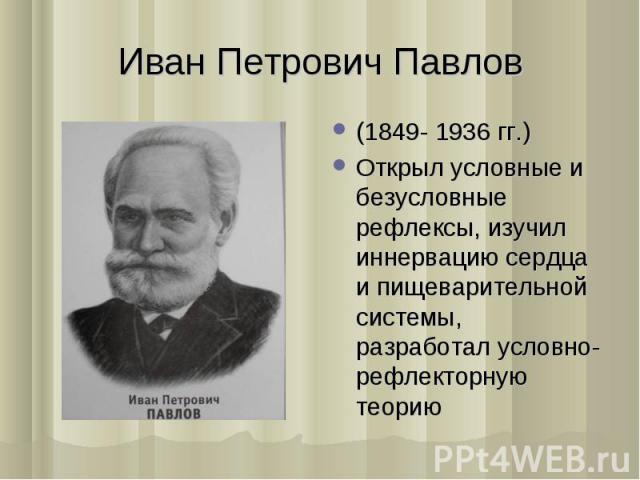 (1849- 1936 гг.) (1849- 1936 гг.) Открыл условные и безусловные рефлексы, изучил иннервацию сердца и пищеварительной системы, разработал условно-рефлекторную теорию