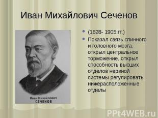 (1828- 1905 гг.) (1828- 1905 гг.) Показал связь спинного и головного мозга, откр