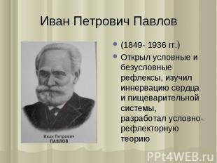 (1849- 1936 гг.) (1849- 1936 гг.) Открыл условные и безусловные рефлексы, изучил
