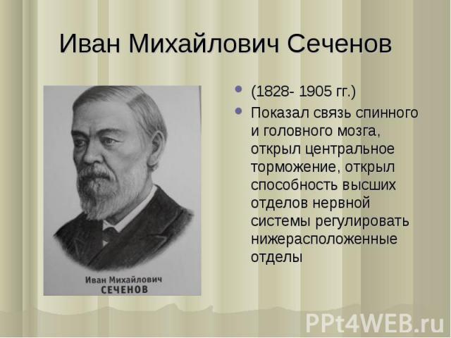 (1828- 1905 гг.) (1828- 1905 гг.) Показал связь спинного и головного мозга, открыл центральное торможение, открыл способность высших отделов нервной системы регулировать нижерасположенные отделы