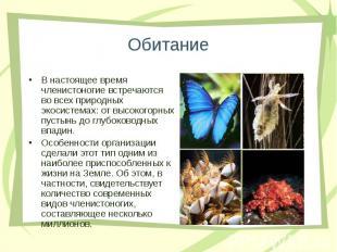 В настоящее время членистоногие встречаются во всех природных экосистемах: от вы