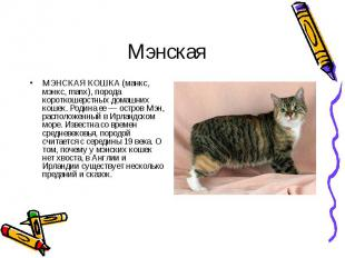 МЭНСКАЯ КОШКА (манкс, мэнкс, manx), порода короткошерстных домашних кошек. Родин