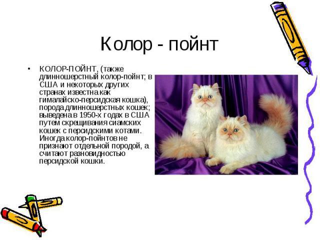 КОЛОР-ПОЙНТ, (также длинношерстный колор-пойнт; в США и некоторых других странах известна как гималайско-персидская кошка), порода длинношерстных кошек; выведена в 1950-х годах в США путем скрещивания сиамских кошек с персидскими котами. Иногда коло…