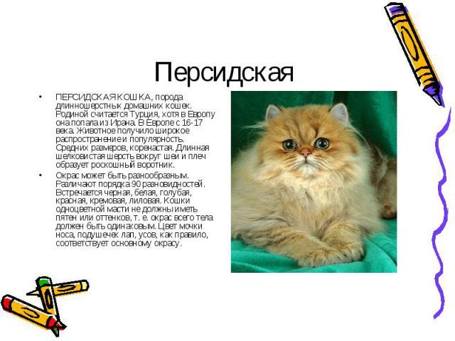 ПЕРСИДСКАЯ КОШКА, порода длинношерстных домашних кошек. Родиной считается Турция, хотя в Европу она попала из Ирана. В Европе с 16-17 века. Животное получило широкое распространение и популярность. Средних размеров, коренастая. Длинная шелковистая ш…