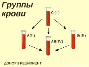 Группы крови ДОНОР РЕЦИПИЕНТ