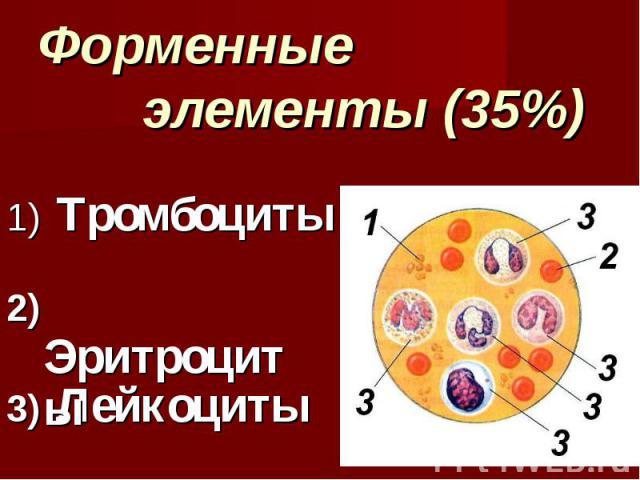 Форменные элементы (35%) Тромбоциты Лейкоциты