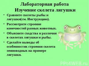 Сравните скелеты рыбы и лягушки(см. Инструкцию). Сравните скелеты рыбы и лягушки