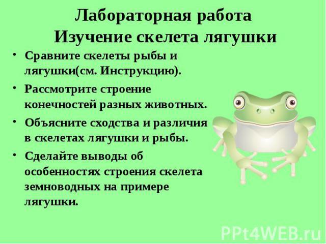 Сравните скелеты рыбы и лягушки(см. Инструкцию). Сравните скелеты рыбы и лягушки(см. Инструкцию). Рассмотрите строение конечностей разных животных. Объясните сходства и различия в скелетах лягушки и рыбы. Сделайте выводы об особенностях строения ске…