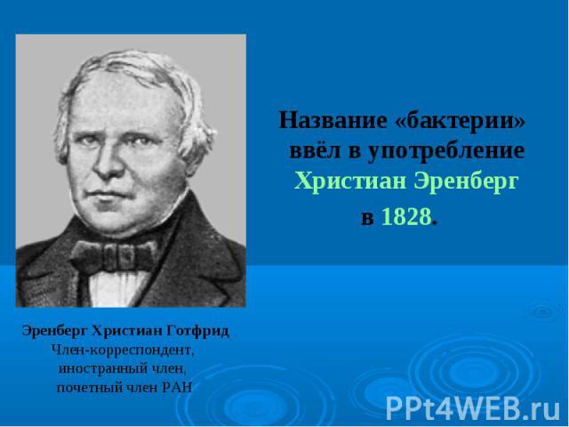 Название «бактерии» ввёл в употребление Христиан Эренберг Название «бактерии» ввёл в употребление Христиан Эренберг в 1828.