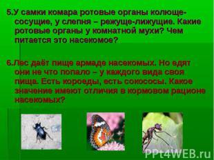 5.У самки комара ротовые органы колюще-сосущие, у слепня – режуще-лижущие. Какие