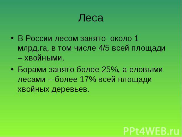 В России лесом занято около 1 млрд.га, в том числе 4/5 всей площади – хвойными. В России лесом занято около 1 млрд.га, в том числе 4/5 всей площади – хвойными. Борами занято более 25%, а еловыми лесами – более 17% всей площади хвойных деревьев.