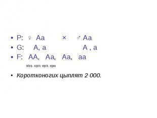 Р: ♀ Аа × ♂ Аа Р: ♀ Аа × ♂ Аа G: А, а А , а F: АА, Аа, Аа, аа гибель коротк. кор