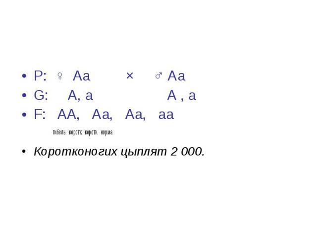 Р: ♀ Аа × ♂ Аа Р: ♀ Аа × ♂ Аа G: А, а А , а F: АА, Аа, Аа, аа гибель коротк. коротк. норма Коротконогих цыплят 2000.