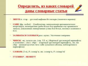 ЗИПУН м. стар. – русский кафтан без козыря (стоячего ворота). САШЕ (фр. sachet)