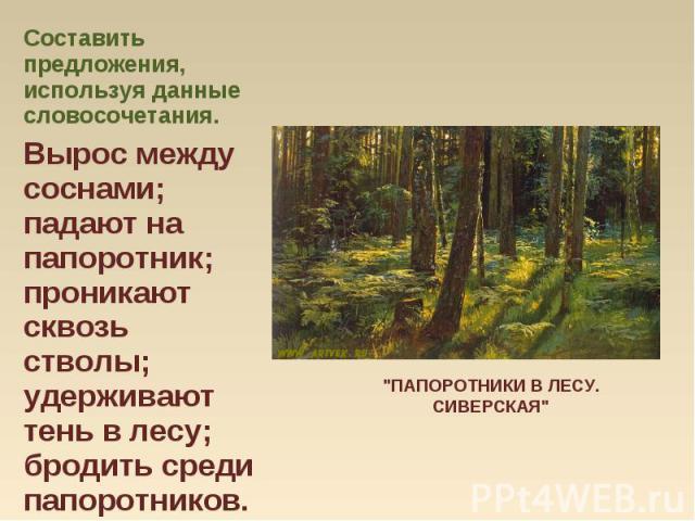 Составить предложения, используя данные словосочетания. Составить предложения, используя данные словосочетания. Вырос между соснами; падают на папоротник; проникают сквозь стволы; удерживают тень в лесу; бродить среди папоротников.