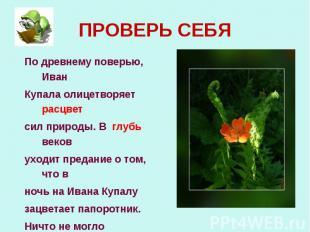 По древнему поверью, Иван По древнему поверью, Иван Купала олицетворяет расцвет