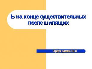 Ь на конце существительных после шипящих Орфограмма № 8