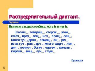 Распределительный диктант. Шалаш_, товарищ_, сторож _, этаж_, ключ_, врач_, вещ_