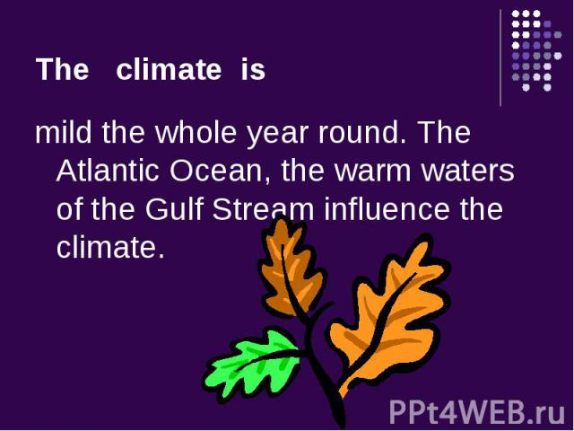mild the whole year round. The Atlantic Ocean, the warm waters of the Gulf Stream influence the climate. mild the whole year round. The Atlantic Ocean, the warm waters of the Gulf Stream influence the climate.