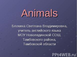Animals Блохина Светлана Владимировна, учитель английского языка МОУ Новолядинск