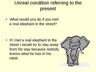 What would you do if you met a real elephant in the street? What would you do if