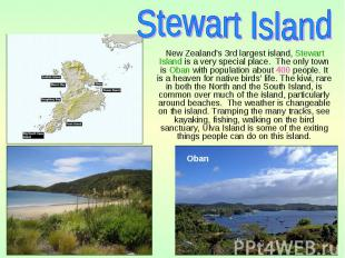 New Zealand's 3rd largest island, Stewart Island is a very special place. The on