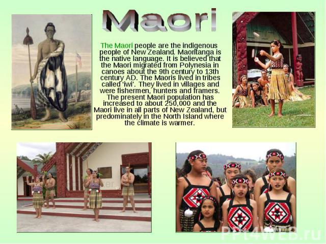 The Maori people are the indigenous people of New Zealand. Maoritanga is the native language. It is believed that the Maori migrated from Polynesia in canoes about the 9th century to 13th century AD. The Maoris lived in tribes called 'iwi'. They liv…
