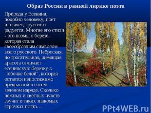 Природа у Есенина, подобно человеку, поет и плачет, грустит и радуется. Многие е