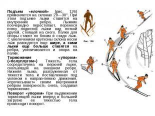 Подъем «елочкой» (рис. 126) применяется на склонах 20—30°. При этом подъеме лыжи