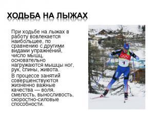При ходьбе на лыжах в работу вовлекается наибольшее, по сравнению с другими вида