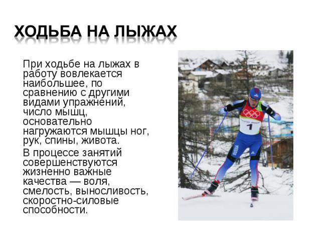 При ходьбе на лыжах в работу вовлекается наибольшее, по сравнению с другими видами упражнений, число мышц, основательно нагружаются мышцы ног, рук, спины, живота. При ходьбе на лыжах в работу вовлекается наибольшее, по сравнению с другими видами упр…
