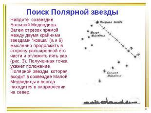Найдите созвездие Большой Медведицы. Затем отрезок прямой между двумя крайними з