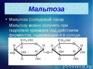 Мальтоза (солодовый сахар Мальтоза (солодовый сахар Мальтозу можно получить при