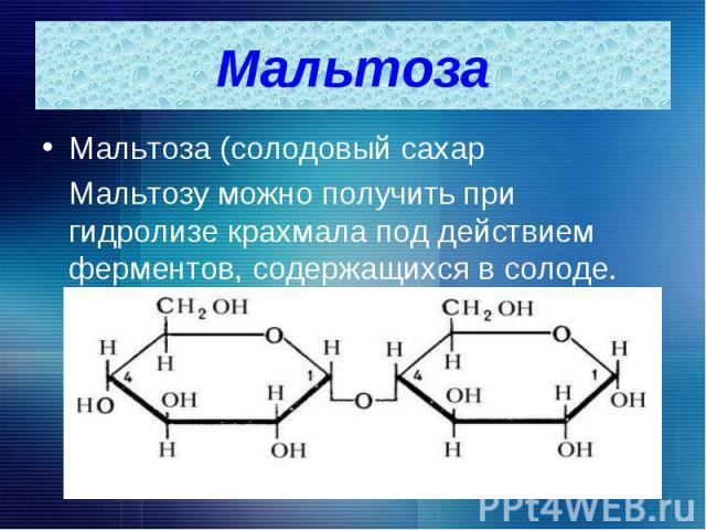 Мальтоза (солодовый сахар Мальтоза (солодовый сахар Мальтозу можно получить при гидролизе крахмала под действием ферментов, содержащихся в солоде.