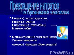 Нитраты(+нитратредуктаза) Нитриты(+амины) Нитроамины(+гемоглабин) Метгемоглобин