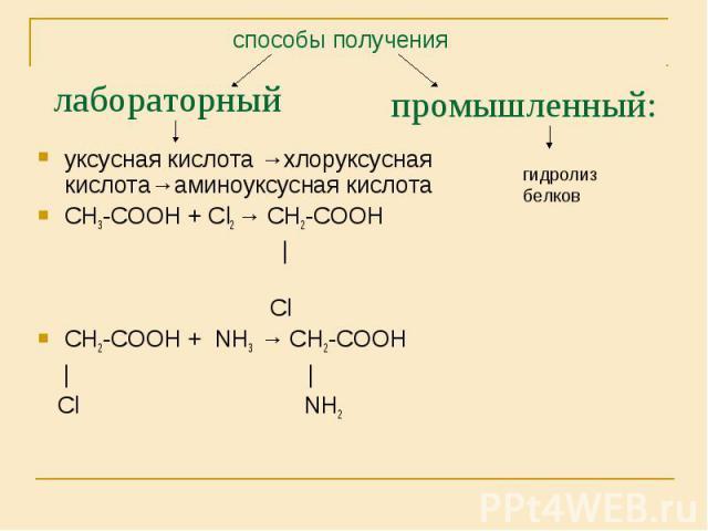 уксусная кислота →хлоруксусная кислота→аминоуксусная кислота уксусная кислота →хлоруксусная кислота→аминоуксусная кислота СН3-СООН + Сl2 → СН2-СООН | Cl СН2-СООН + NH3 → СН2-СООН | | Сl NH2