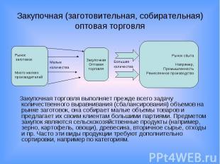 Закупочная (заготовительная, собирательная) оптовая торговля Закупочная торговля