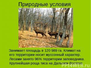 Занимает площадь в 120 989 га. Климат на его территории носит муссонный характер
