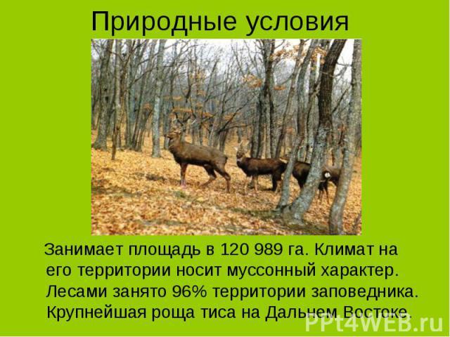 Занимает площадь в 120 989 га. Климат на его территории носит муссонный характер. Лесами занято 96% территории заповедника. Крупнейшая роща тиса на Дальнем Востоке. Занимает площадь в 120 989 га. Климат на его территории носит муссонный характер. Ле…